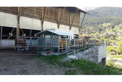 Melžimo įranga Šveicarijos ūkininkui