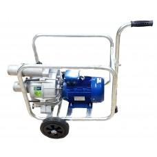 Mobilus purvo vandens siurblys THE30 su el. varikliu